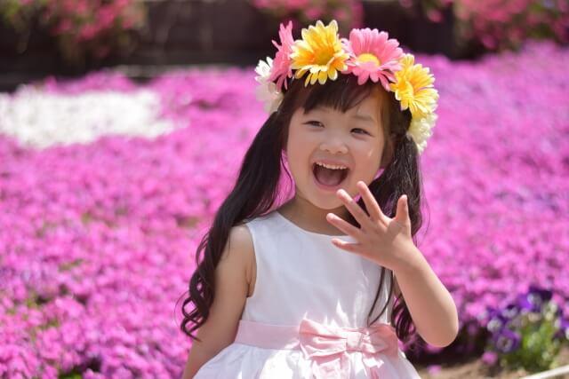 芝桜の名所!関西の4選 見ごろはいつごろ?