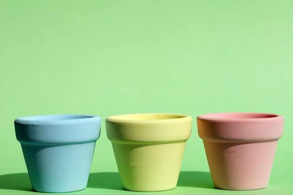 カーネーション5号鉢の大きさは何cm?プレゼントにおすすめの大きさは?