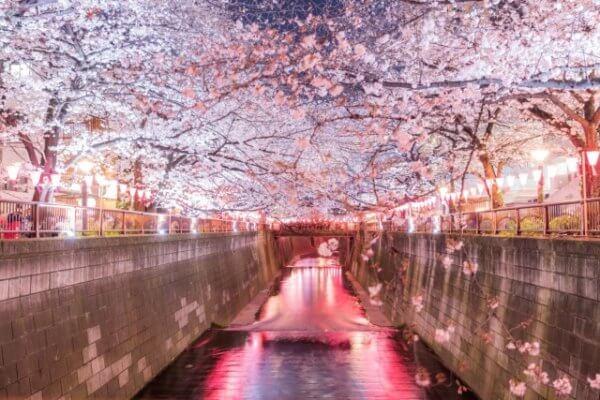 東急都営三田線で女子一人暮らしにぴったりな街4選
