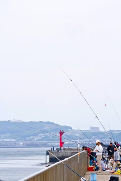 静岡の釣りの穴場スポットを紹介