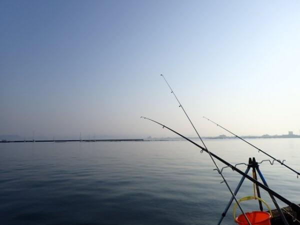 静岡の海の釣り堀おすすめ3選