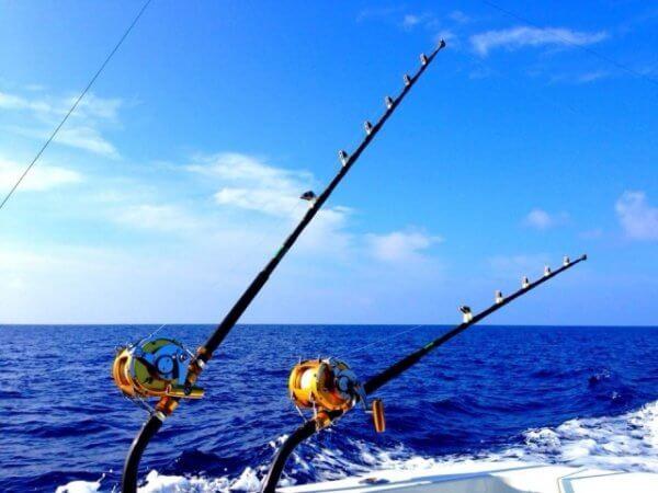 静岡の船釣りのおすすめと料金