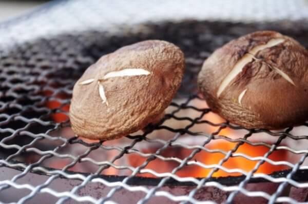 椎茸狩りで静岡のおすすめスポット