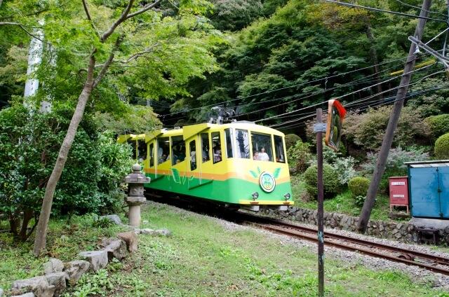 高尾山登山 食事ガイド ふもとと山中のおいしいお店