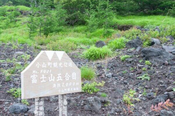 富士山登山で馬で登れるって本当?料金はいくら?