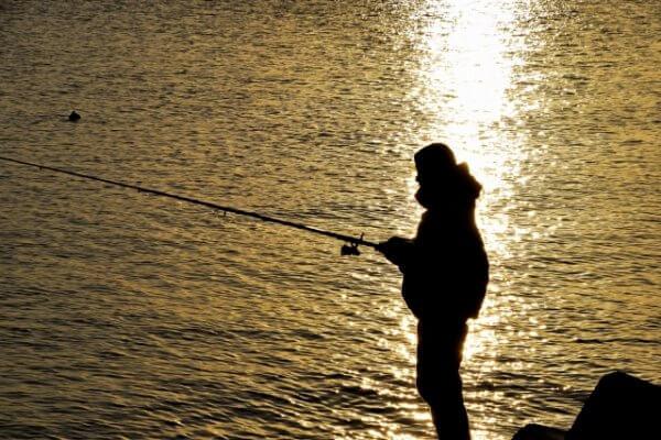 愛知県の夜釣りポイントを釣り好きが紹介します
