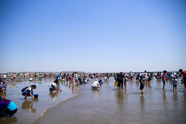 潮干狩り!静岡県の無料スポットを紹介します