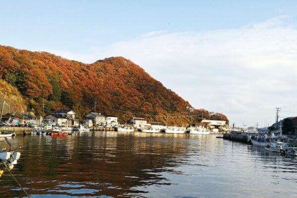 イカ釣り初心者にもおすすめな神奈川県のイカ釣りスポット