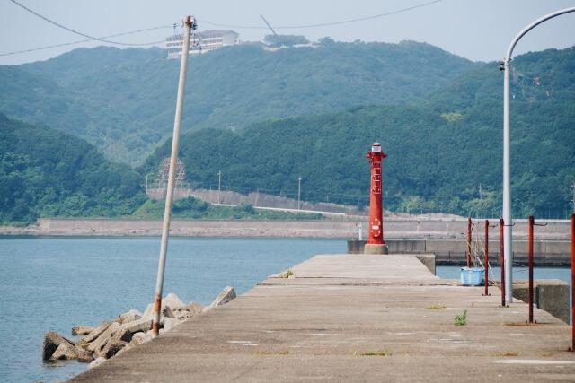 5月6月の釣り!静岡では何をねらうか!